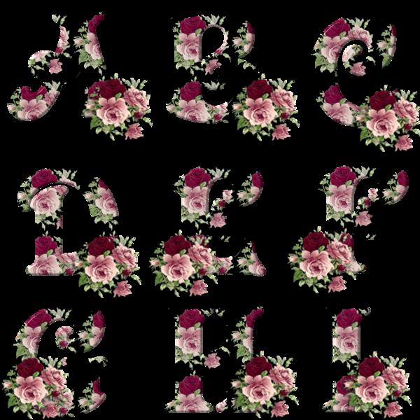 Alfabeto con rosas sobre fondo negro. | Oh my Alfabetos!: www.ohmyalfabetos.com/2013/10/alfabeto-con-rosas-sobre-fondo-negro...