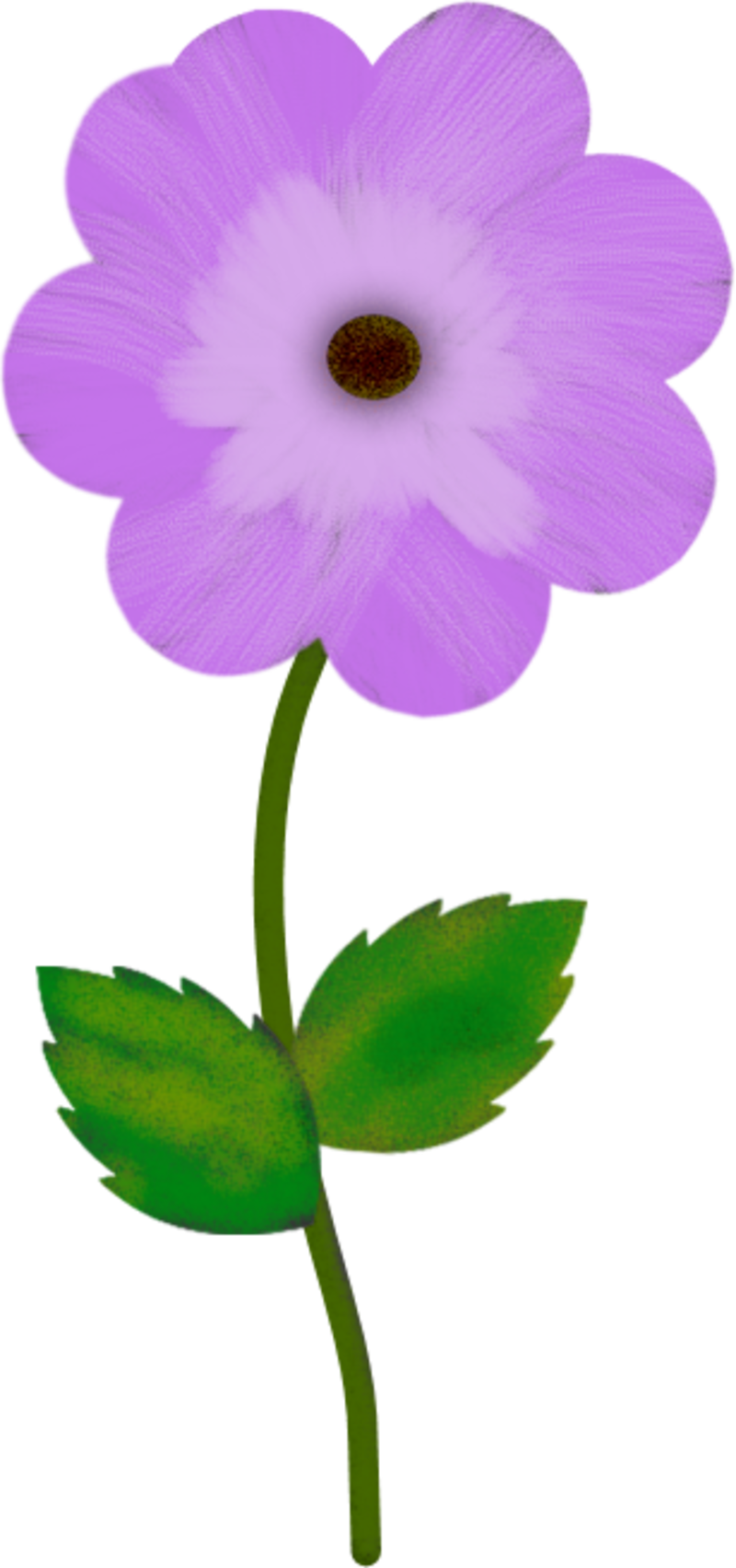 FLEUR8SEP1.png