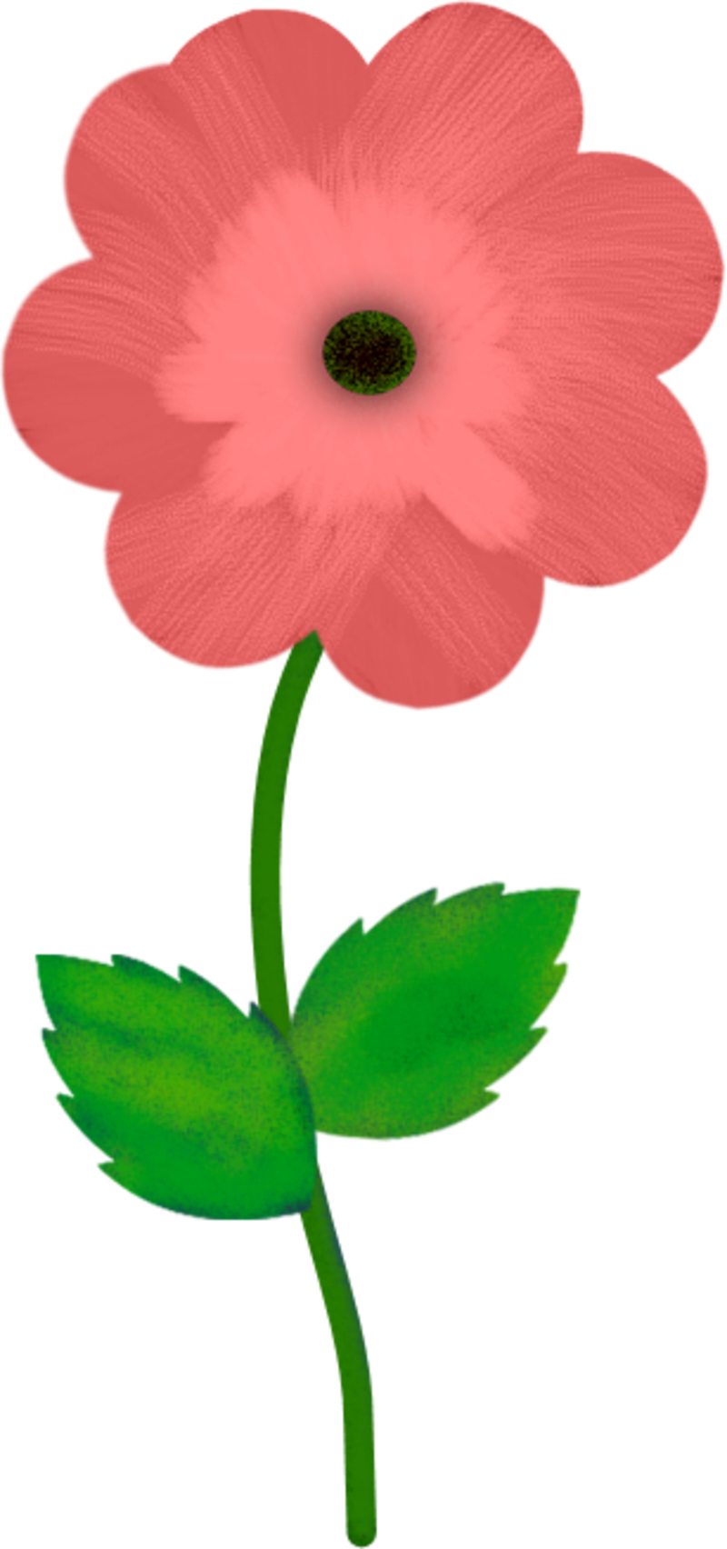 FLEUR8SEP5.png