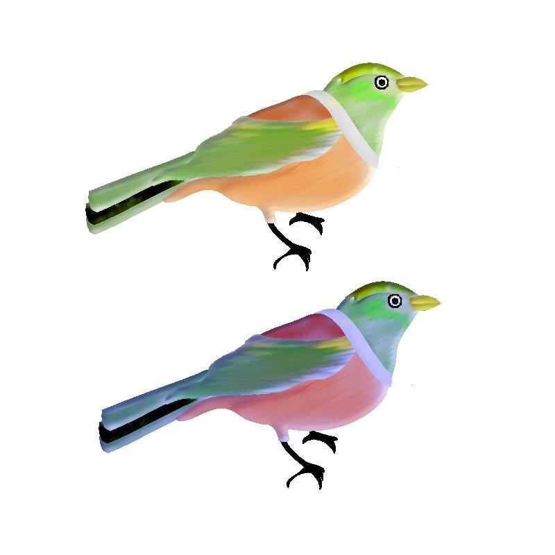 OISEAUX-BIRDS-21A2.png