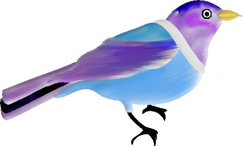 OISEAUX-BIRDS-21A3.png
