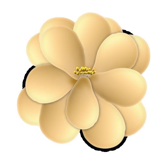 fleur15m1.png