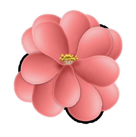 fleur15m4.png