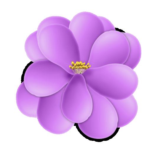 fleur15m5.png