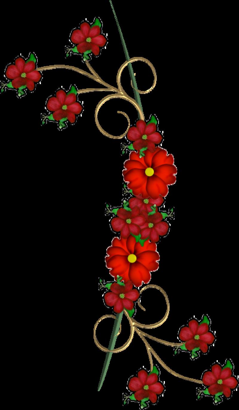 fleur22m2.png