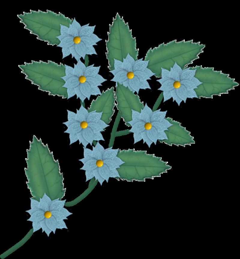 fleurs129m_1.png