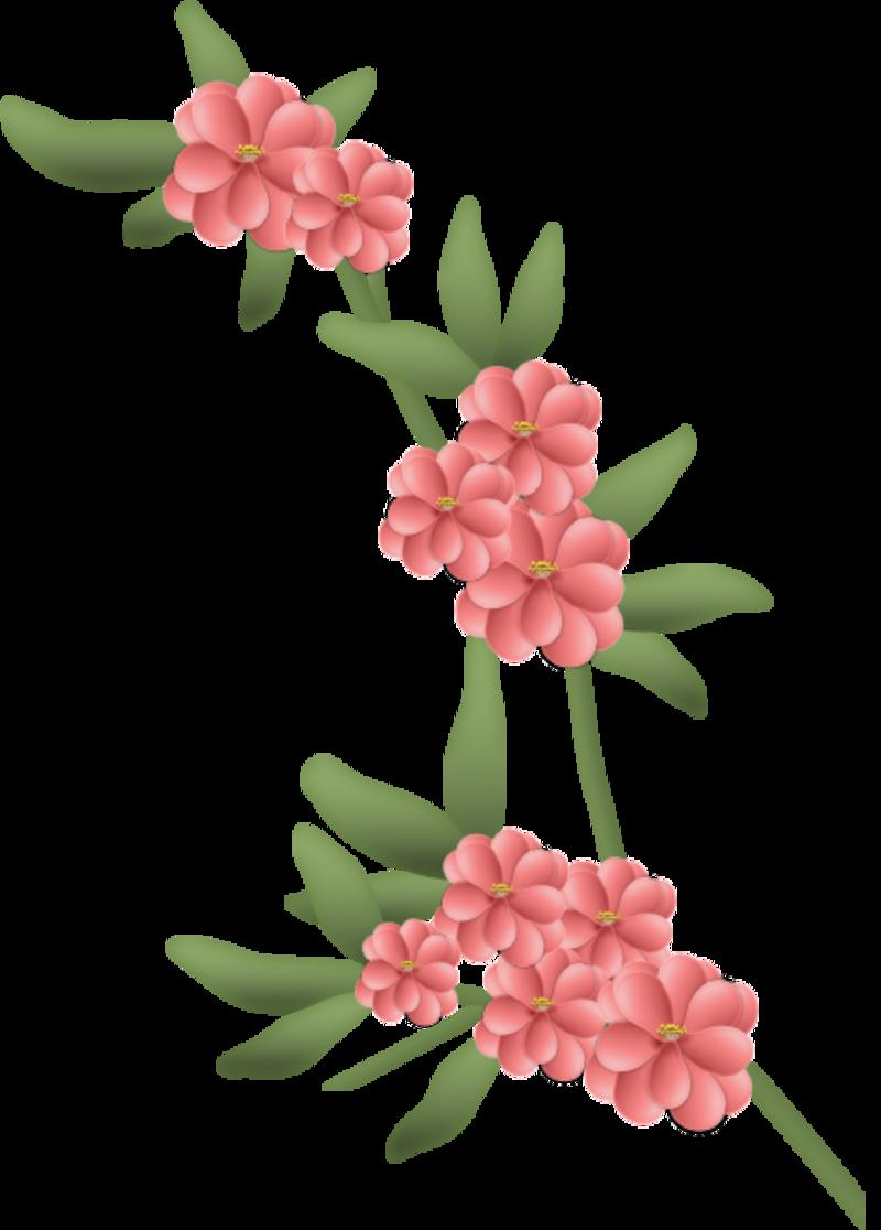 fleurs16m1.png