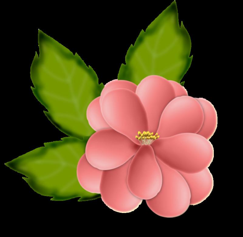 fleurs16m11.png
