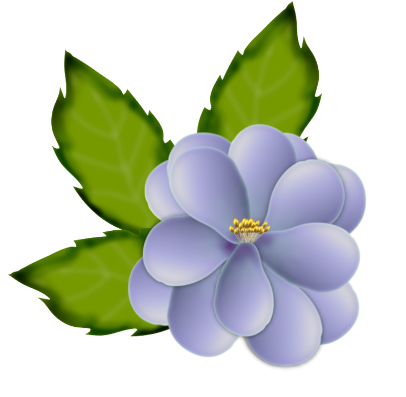 fleurs16m12.png