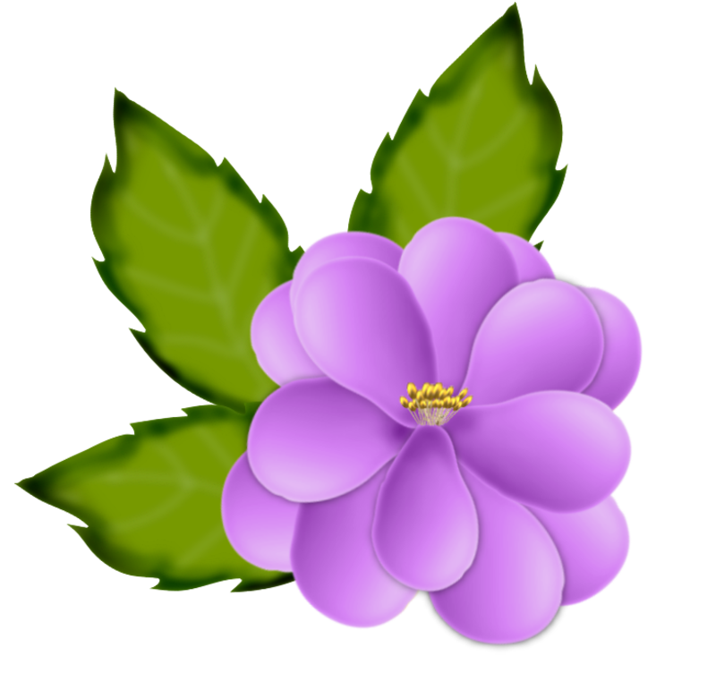 fleurs16m13.png