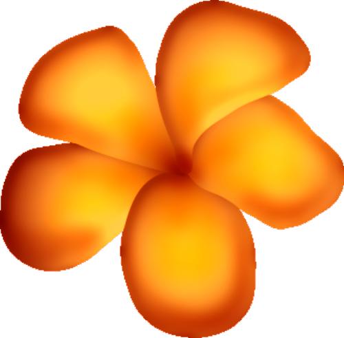 fleurs16m15.png