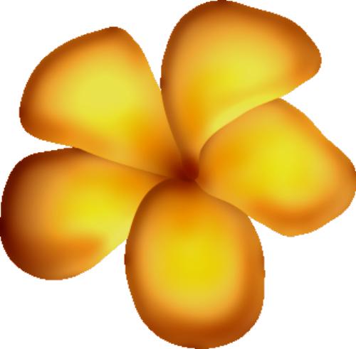 fleurs16m16.png
