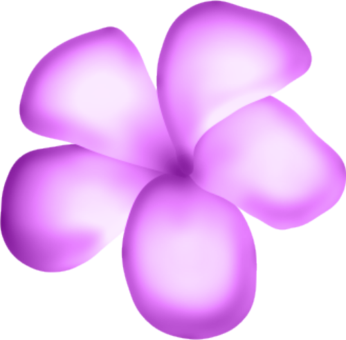 fleurs16m18.png