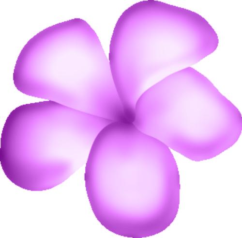 fleurs16m18.png