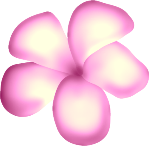 fleurs16m19.png