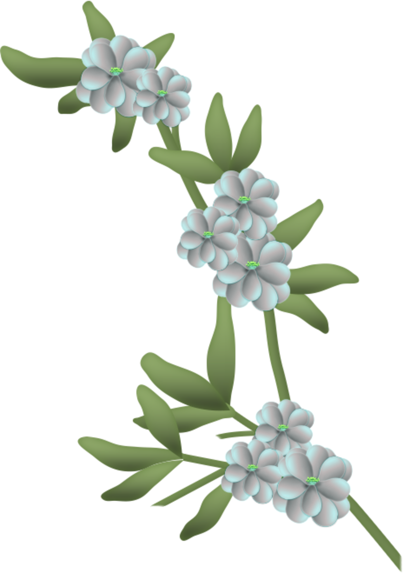 fleurs16m2.png