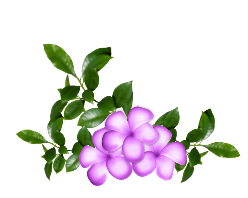 fleurs16m20.png
