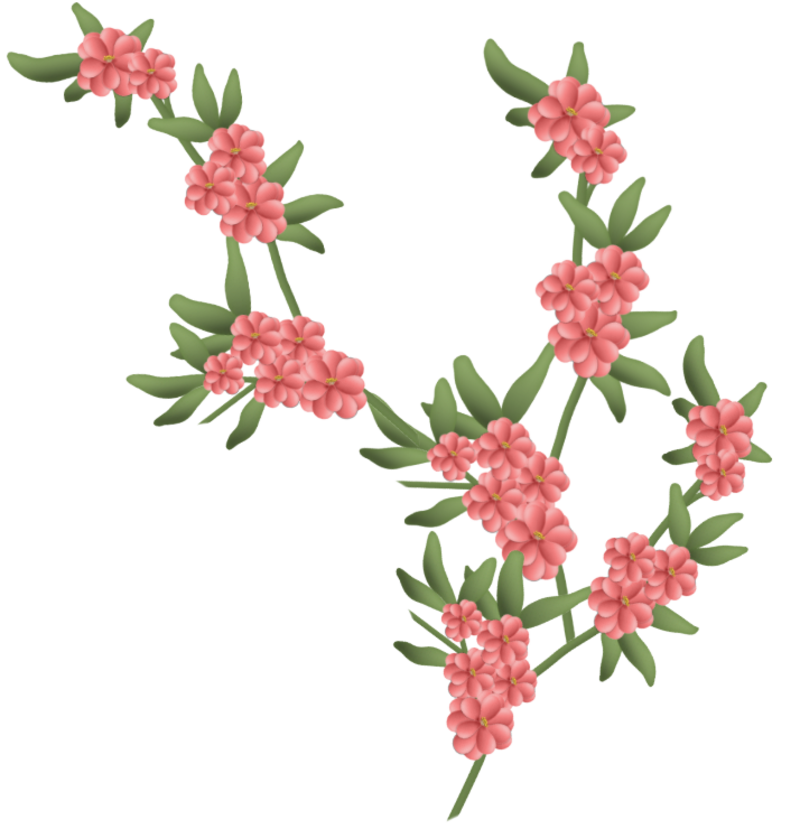 fleurs16m7.png