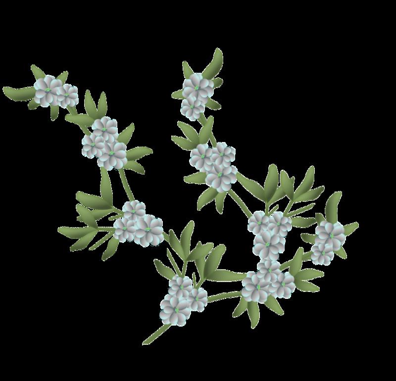 fleurs16m8.png