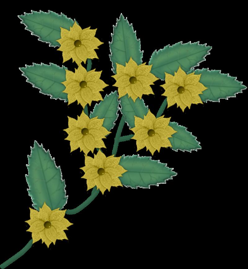 fleurs229m_1.png