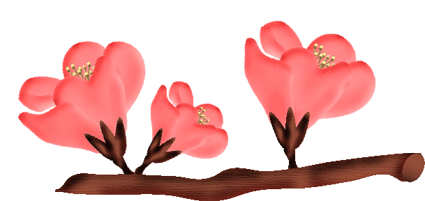 fleurs23m3.png