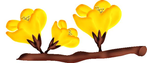 fleurs23m4.png