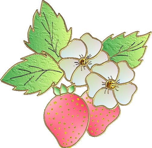 fraise25m6.png