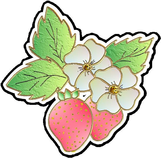 fraise25m7.png