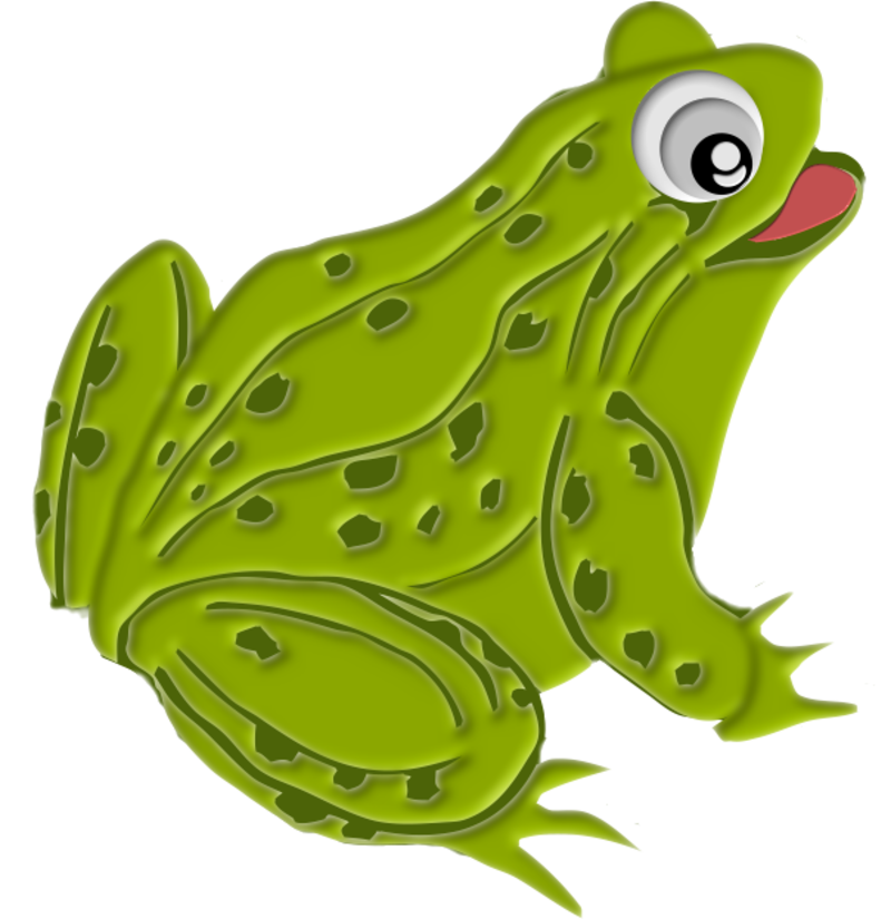 grenouille13m1.png