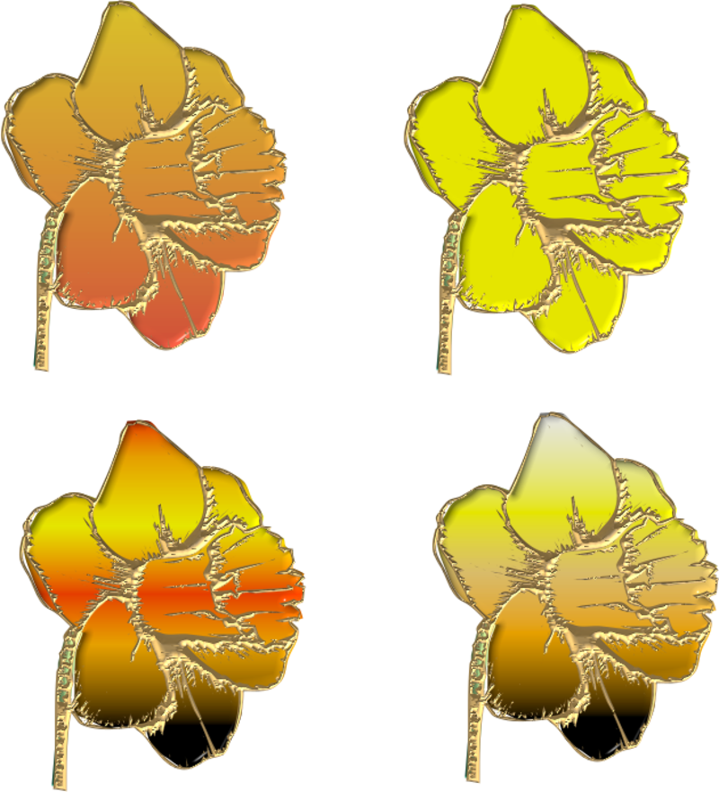 jonquilles15m2011.png