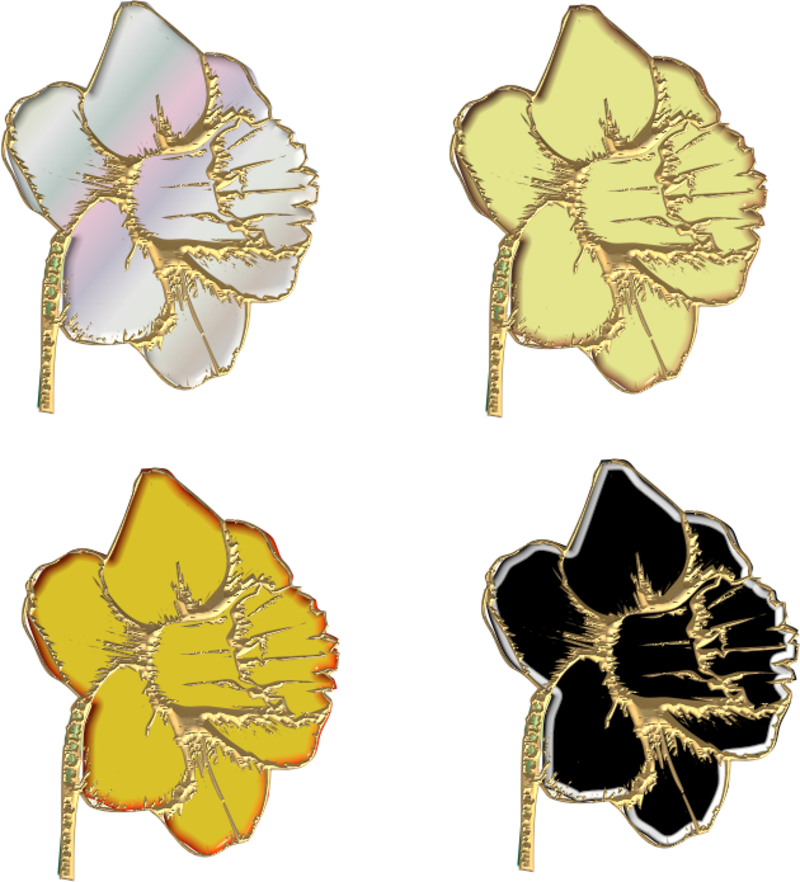 jonquilles15m20112.png