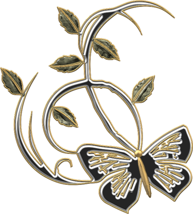 papillon18j20114.png