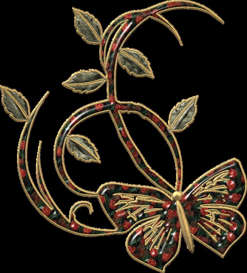 papillon18j20117.png