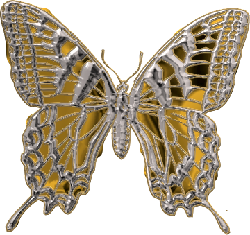 papillon18j20118.png