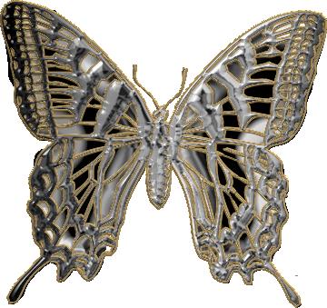 papillon18j20119.png