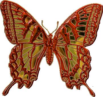 papillon18j20120.png