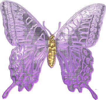 papillon18j20122.png