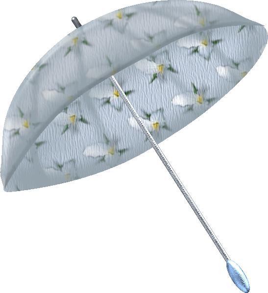 parapluie12.png