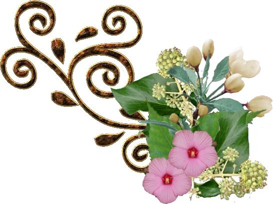 remolino fleur1.png