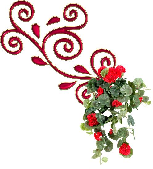 remolino fleur3.png