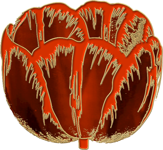 tulipe3.png
